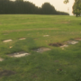Wapato Cemetery Board will meet tomorrow to discuss condition of cemetery