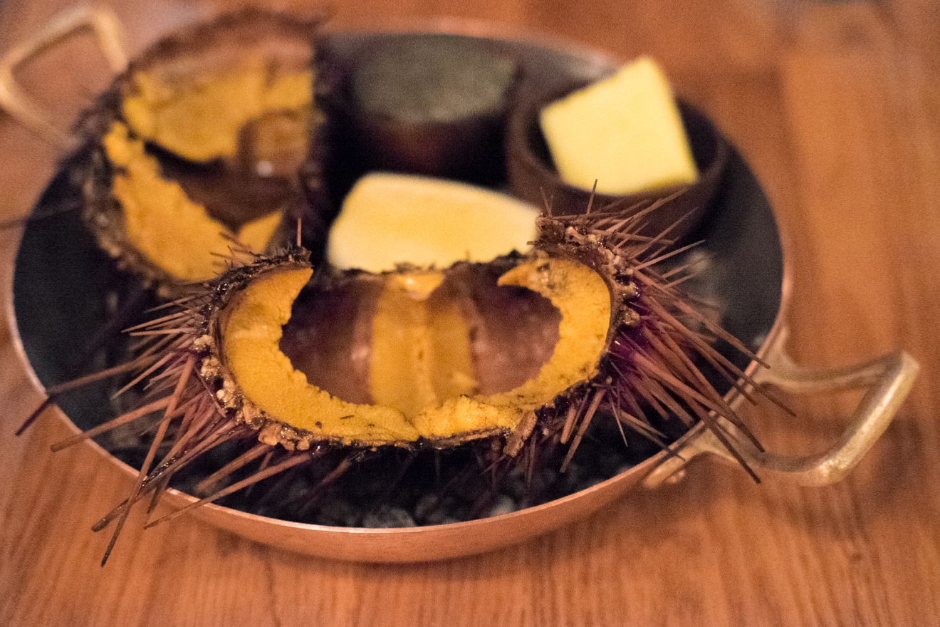 Outstanding Wine Program Semifinalist: L'Oursin. Here's their namesake sea urchin (Image: Naomi Tomky / Seattle Refined){ }
