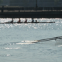Frogtown Regatta races on despite algae