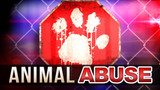 Alabama woman charged after 6 dogs had to be euthanized