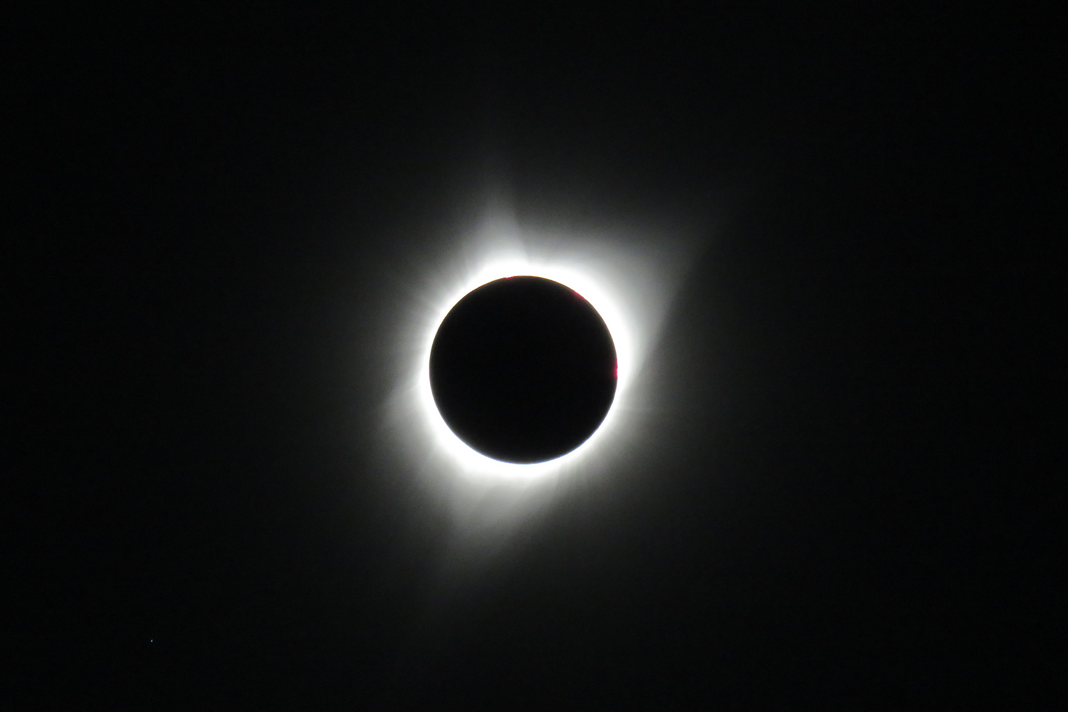 TOTALITY!!! Oregon Solarfest (Image: Eloise Thomas / Seattle Refined)